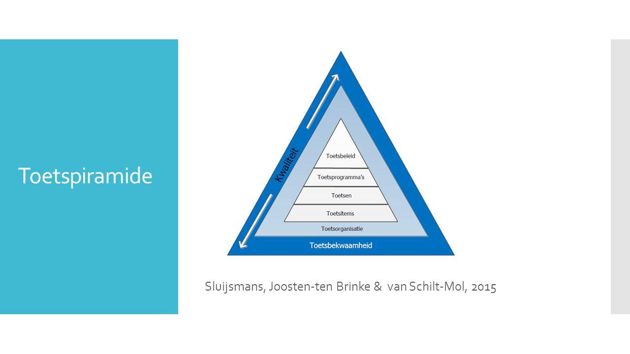 Sluijsmans, Joosten-ten Brinke & van Schilt-Mol, 2015