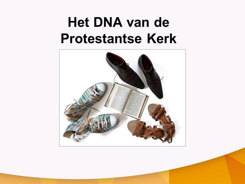 Het DNA van de Protestantse Kerk