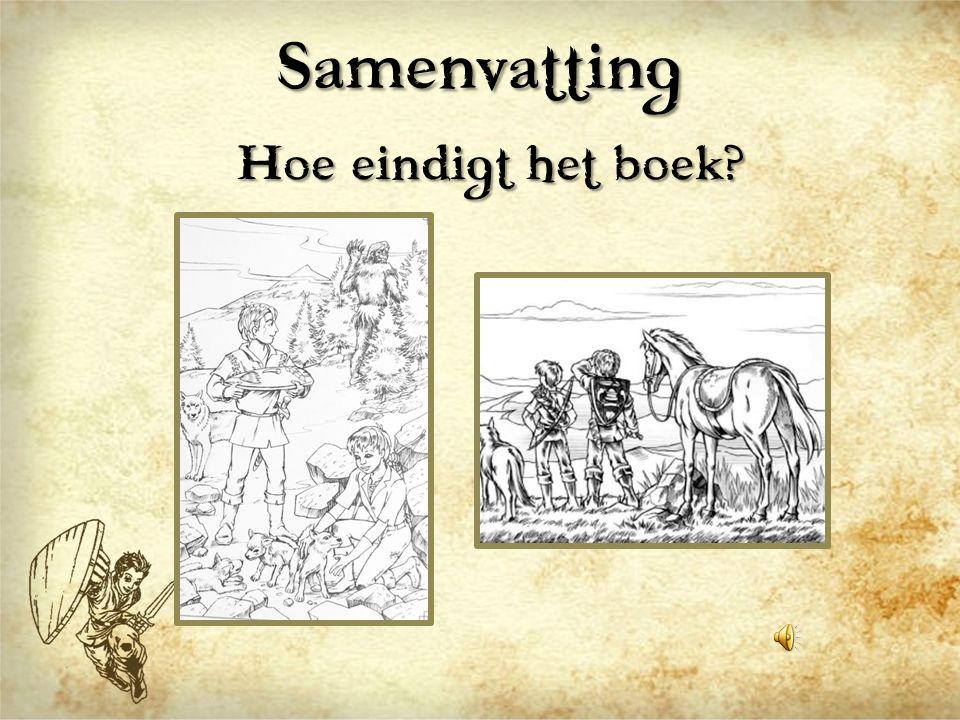 Samenvatting Hoe eindigt het boek