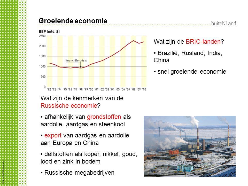 Groeiende economie Wat zijn de BRIC-landen