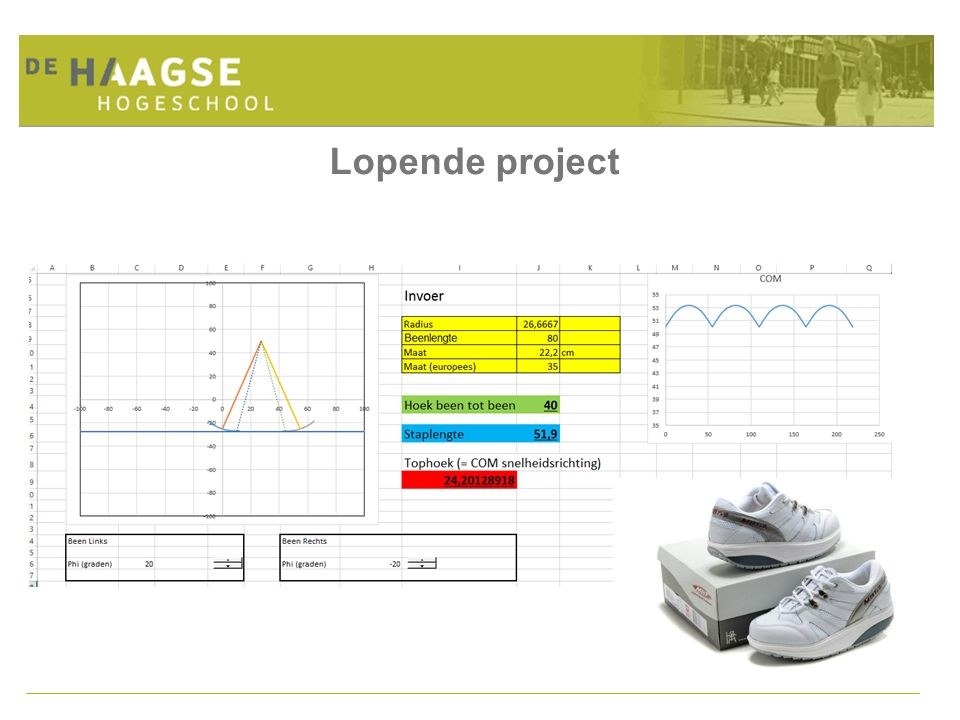 Lopende project