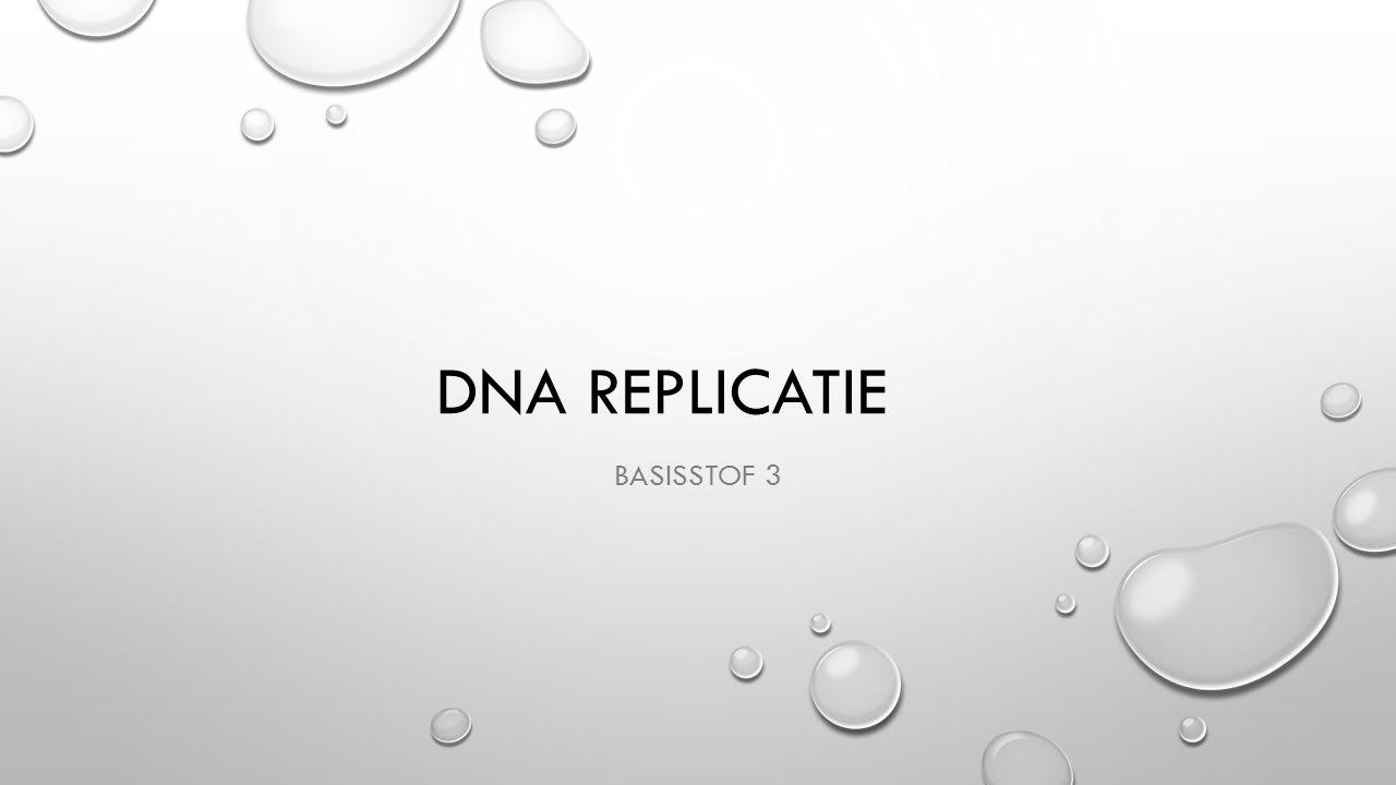 DNA replicatie Basisstof 3