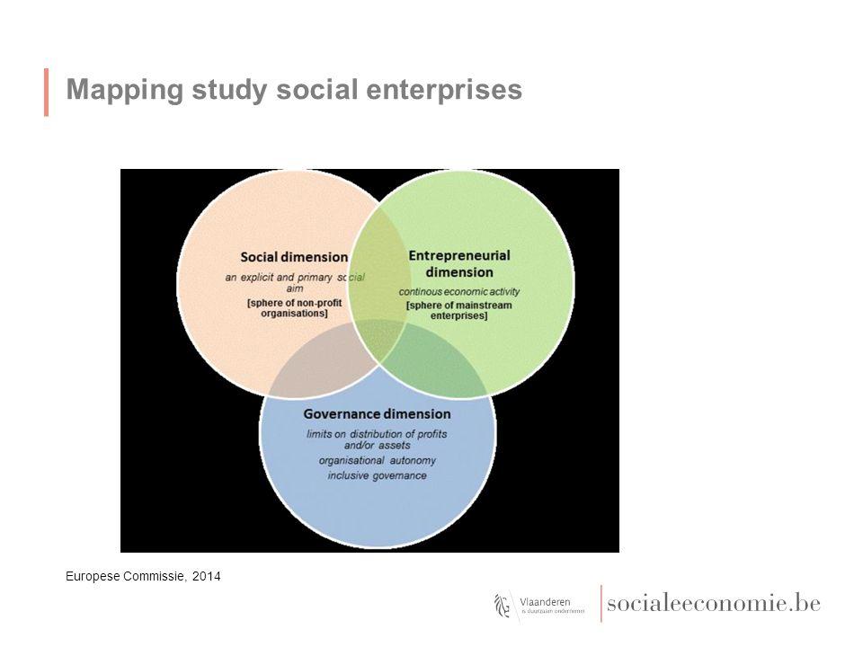 Mapping study social enterprises