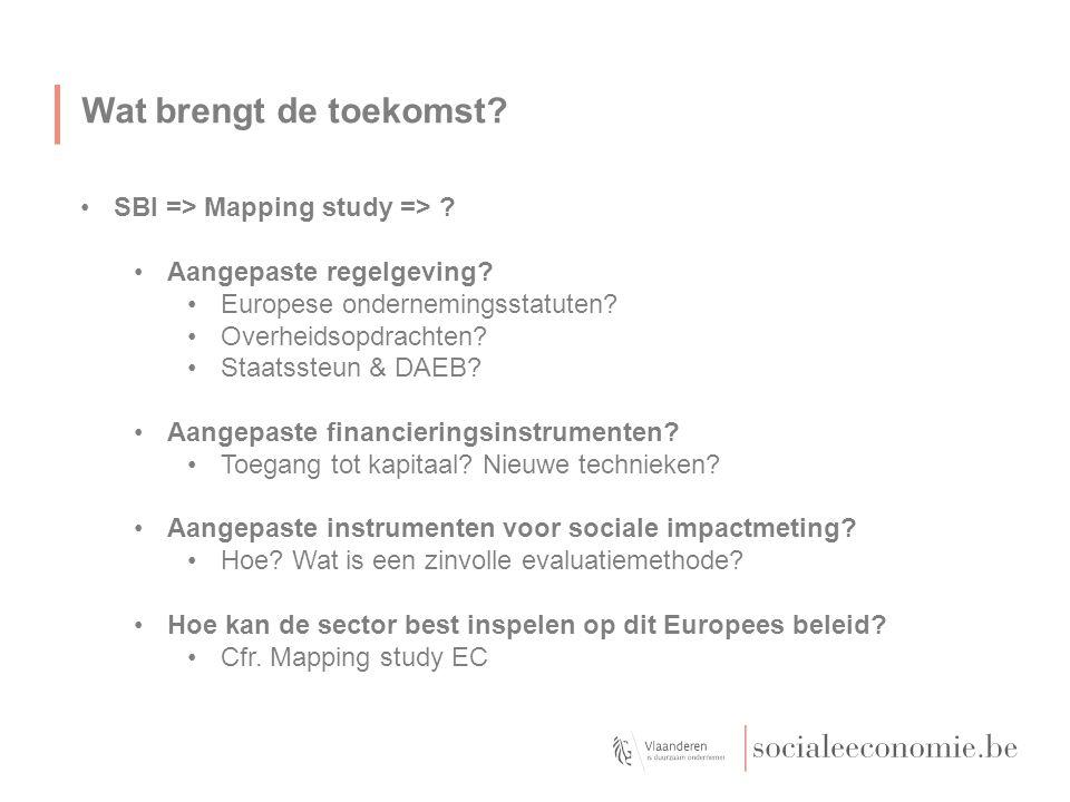 Wat brengt de toekomst SBI => Mapping study =>
