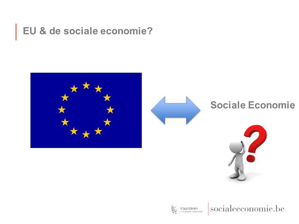 EU & de sociale economie