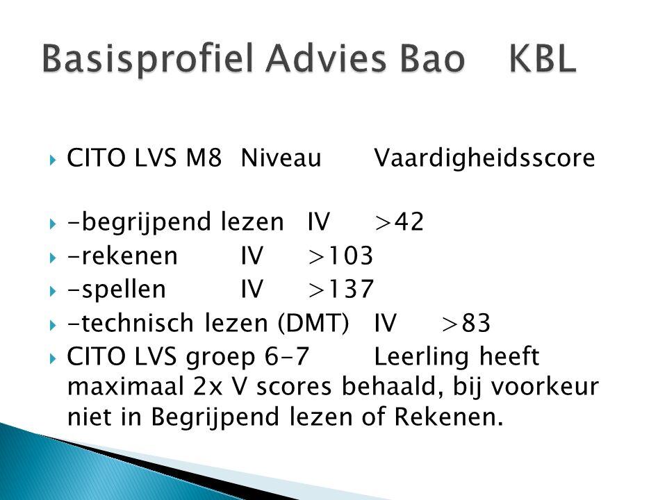 Basisprofiel Advies Bao KBL