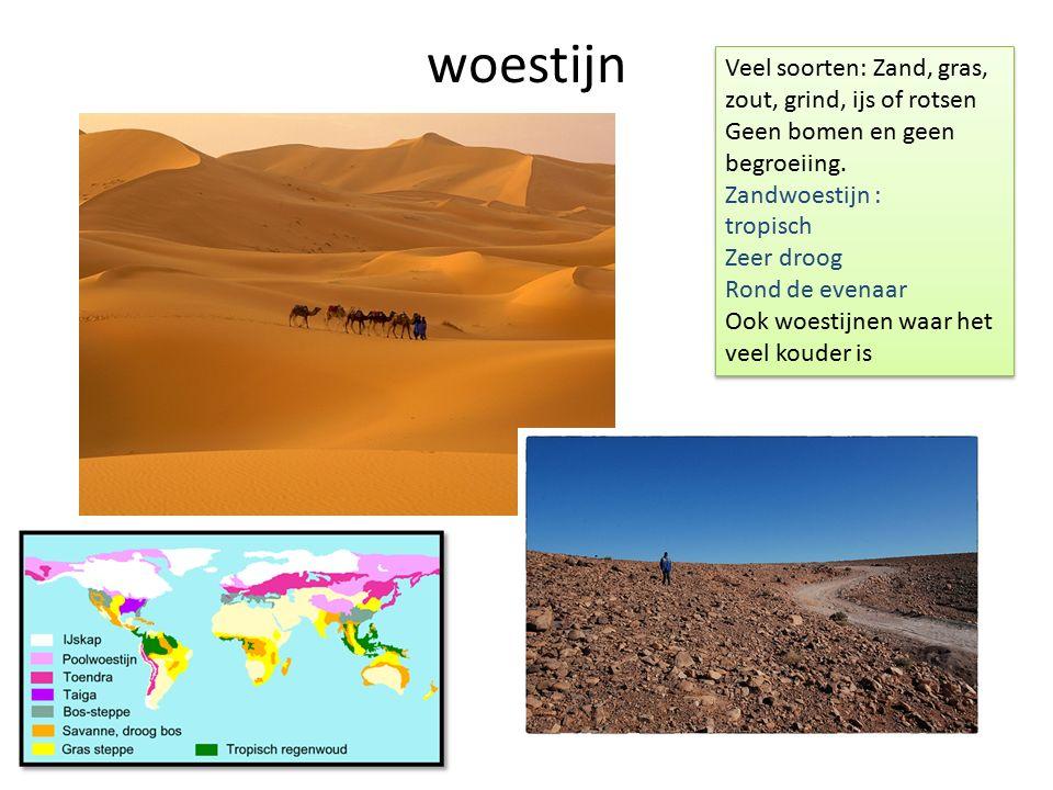 woestijn Veel soorten: Zand, gras, zout, grind, ijs of rotsen