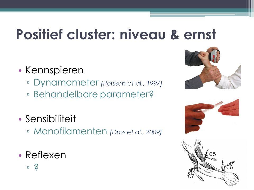 Positief cluster: niveau & ernst
