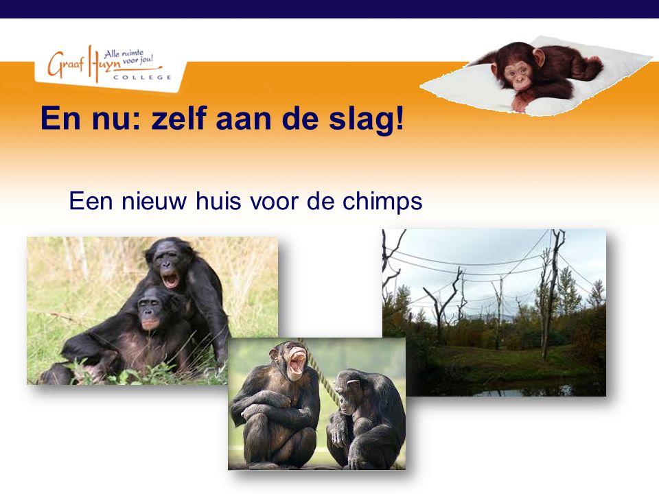 En nu: zelf aan de slag! Een nieuw huis voor de chimps