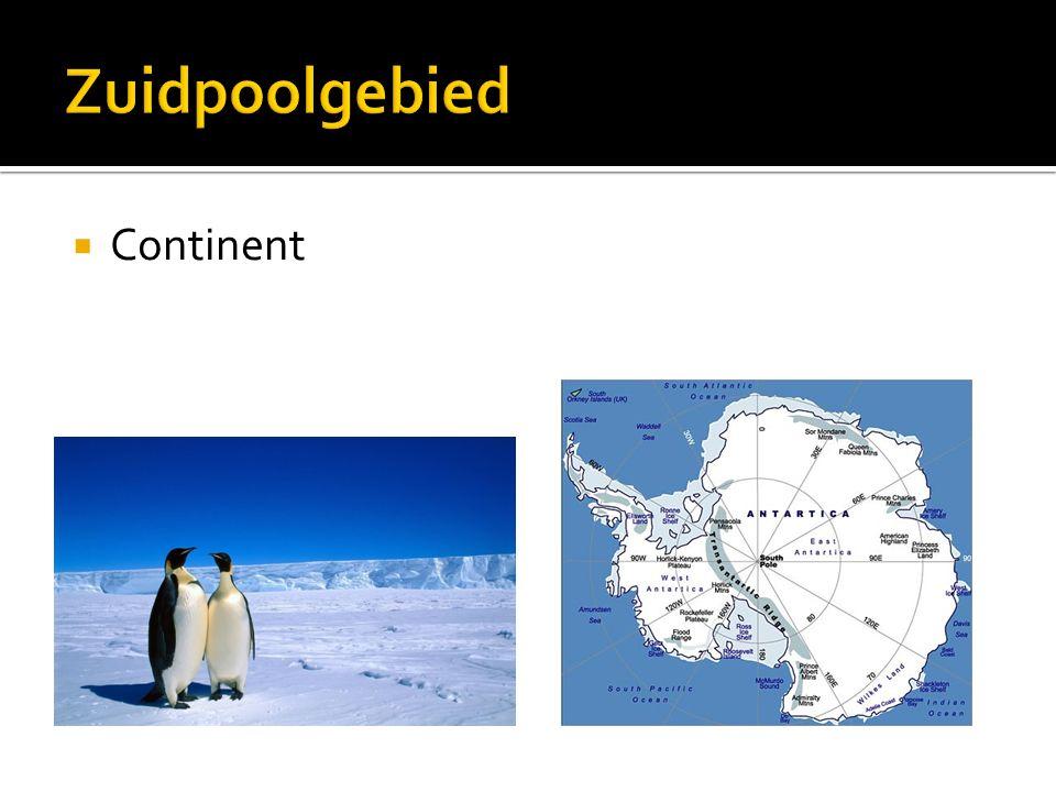 Zuidpoolgebied Continent