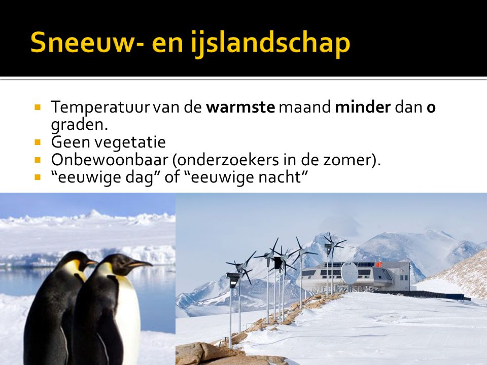 Sneeuw- en ijslandschap