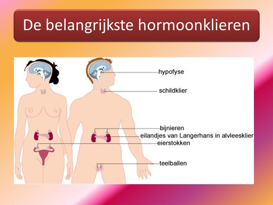 De belangrijkste hormoonklieren