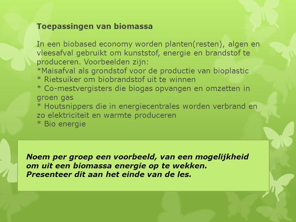 Toepassingen van biomassa In een biobased economy worden planten(resten), algen en vleesafval gebruikt om kunststof, energie en brandstof te produceren. Voorbeelden zijn: *Maisafval als grondstof voor de productie van bioplastic * Rietsuiker om biobrandstof uit te winnen * Co-mestvergisters die biogas opvangen en omzetten in groen gas * Houtsnippers die in energiecentrales worden verbrand en zo elektriciteit en warmte produceren * Bio energie