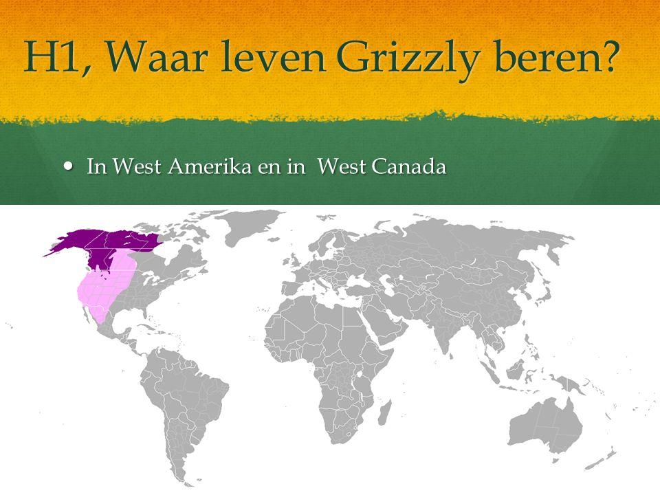 H1, Waar leven Grizzly beren