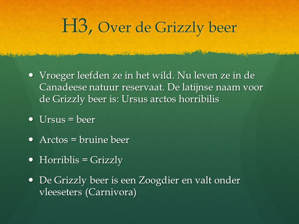 H3, Over de Grizzly beer