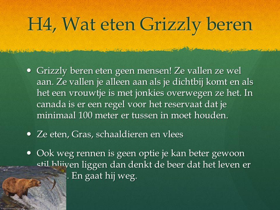 H4, Wat eten Grizzly beren