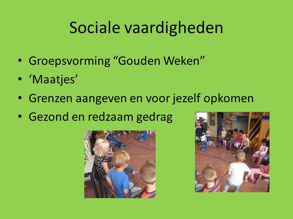 Sociale vaardigheden Groepsvorming Gouden Weken 'Maatjes'