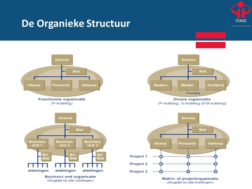 De Organieke Structuur