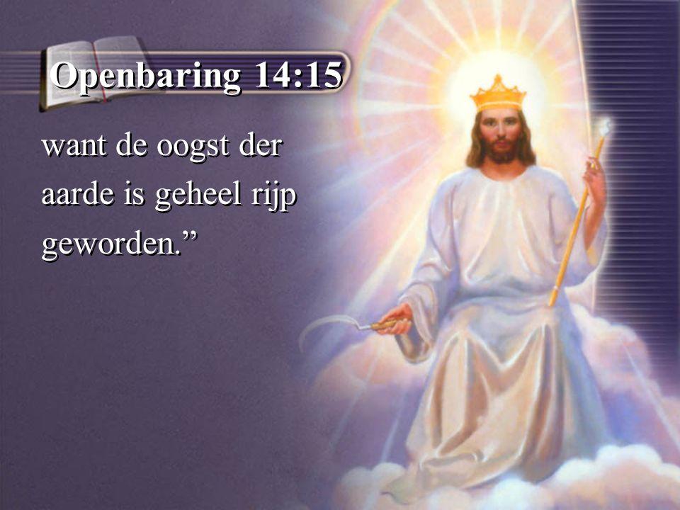 Openbaring 14:15 want de oogst der aarde is geheel rijp geworden.