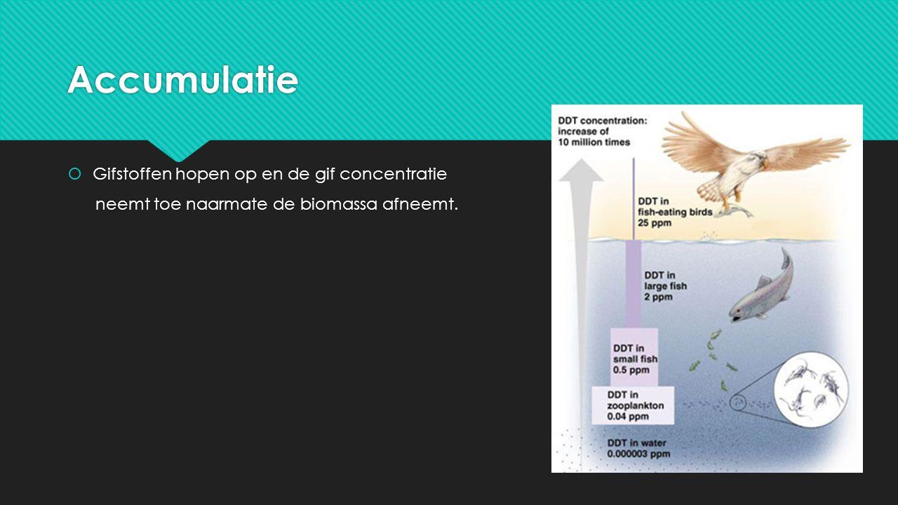 Accumulatie Gifstoffen hopen op en de gif concentratie