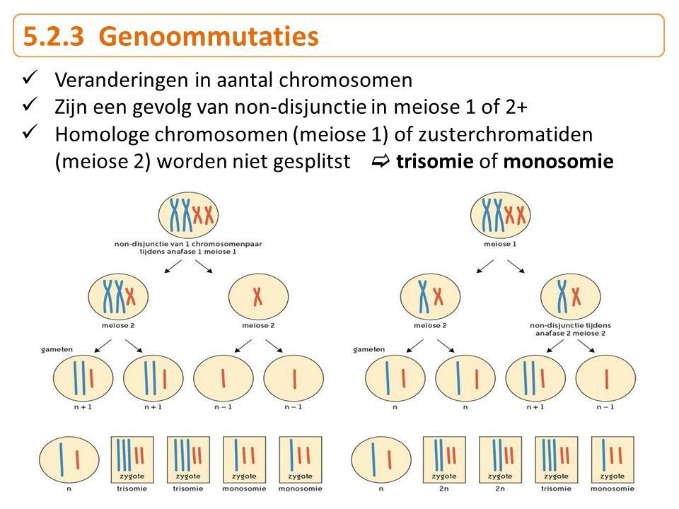 5.2.3 Genoommutaties Veranderingen in aantal chromosomen