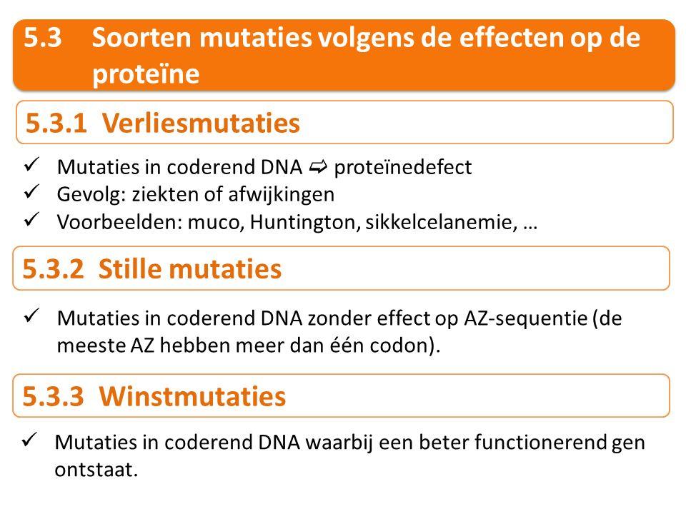 5.3 Soorten mutaties volgens de effecten op de proteïne