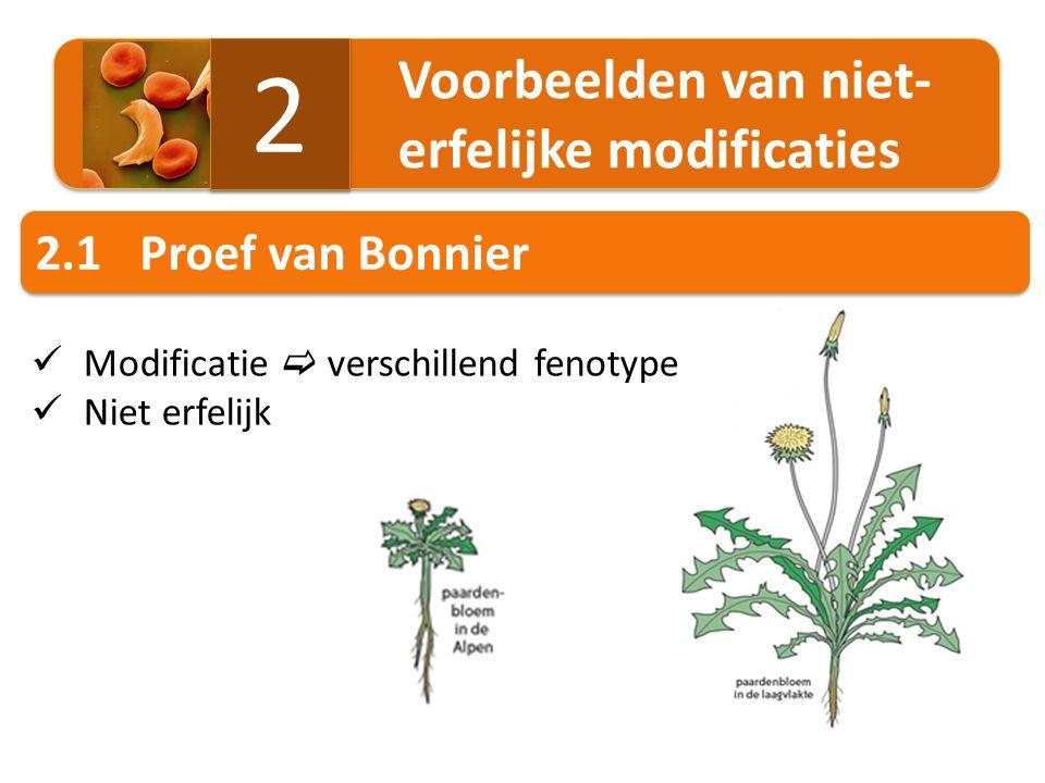 2 2.1 Proef van Bonnier Voorbeelden van niet- erfelijke modificaties