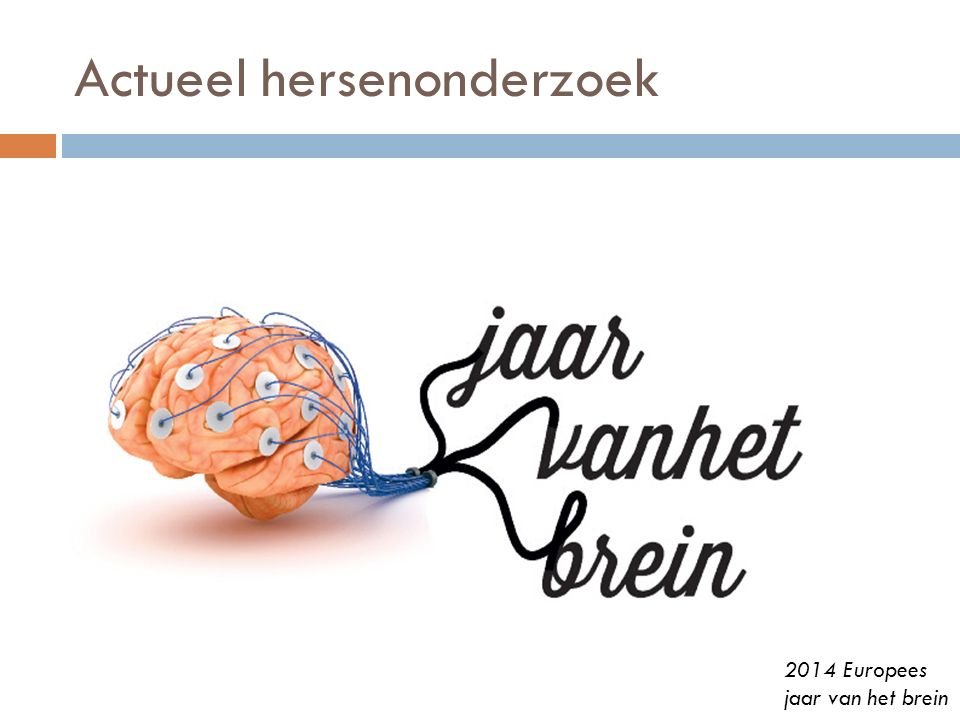 Actueel hersenonderzoek