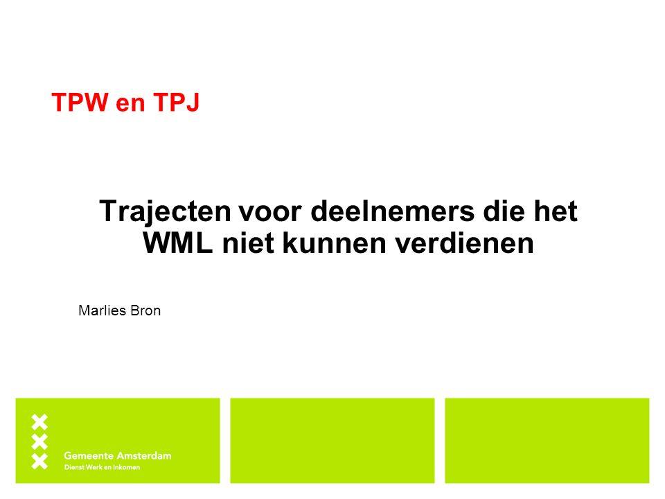 Trajecten voor deelnemers die het WML niet kunnen verdienen
