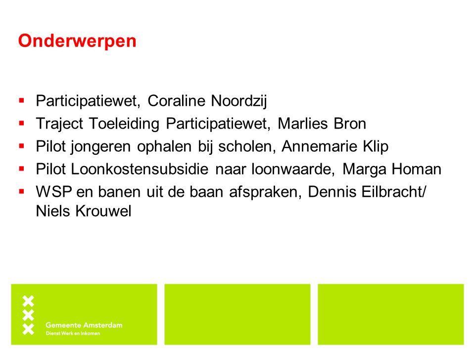 Onderwerpen Participatiewet, Coraline Noordzij