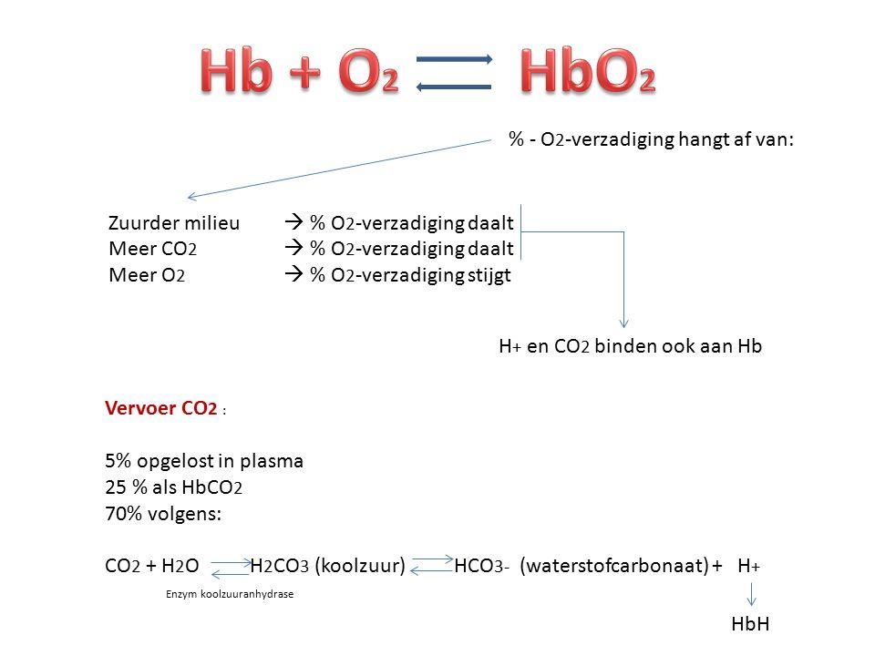 Hb + O2 HbO2 % - O2-verzadiging hangt af van: