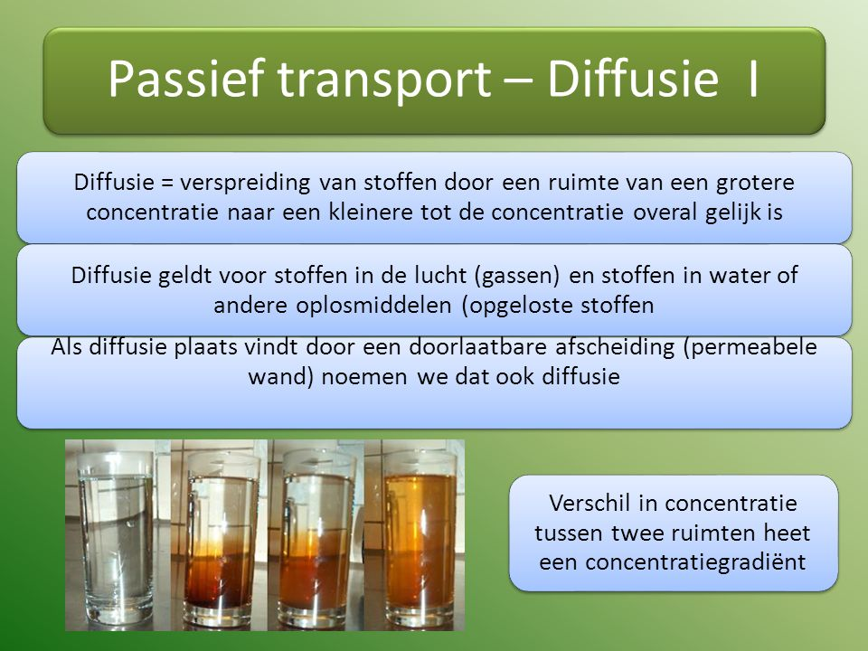 Passief transport – Diffusie I