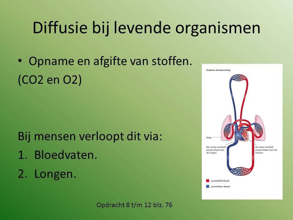 Diffusie bij levende organismen
