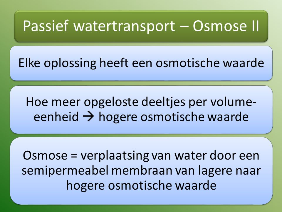 Passief watertransport – Osmose II