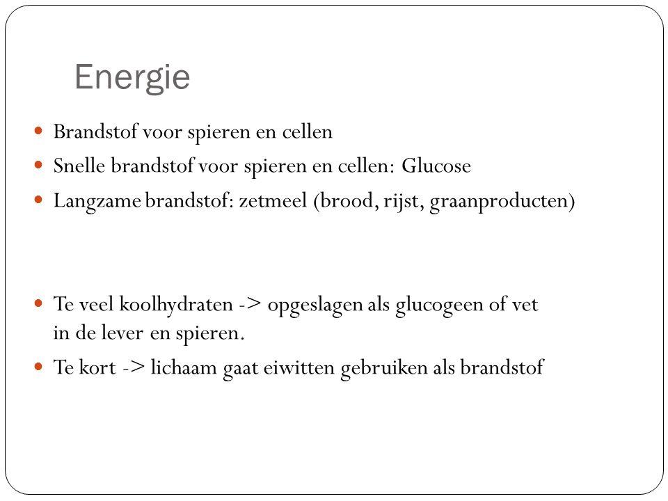 Energie Brandstof voor spieren en cellen