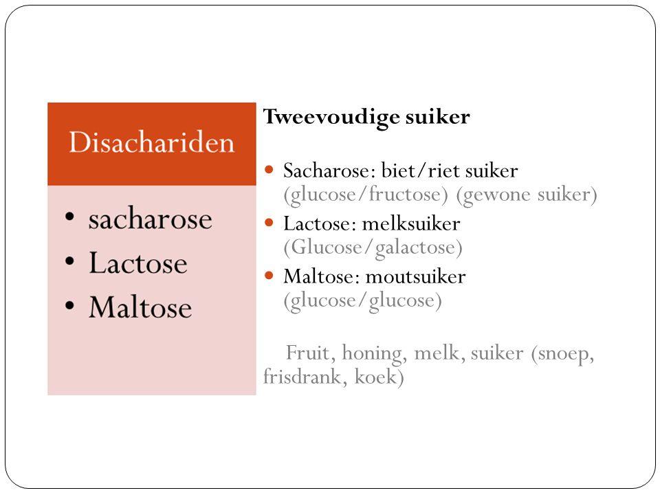Tweevoudige suiker Sacharose: biet/riet suiker (glucose/fructose) (gewone suiker) Lactose: melksuiker (Glucose/galactose)