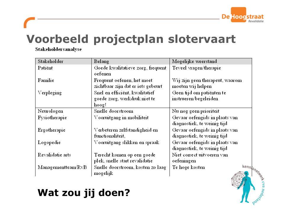 Voorbeeld projectplan slotervaart