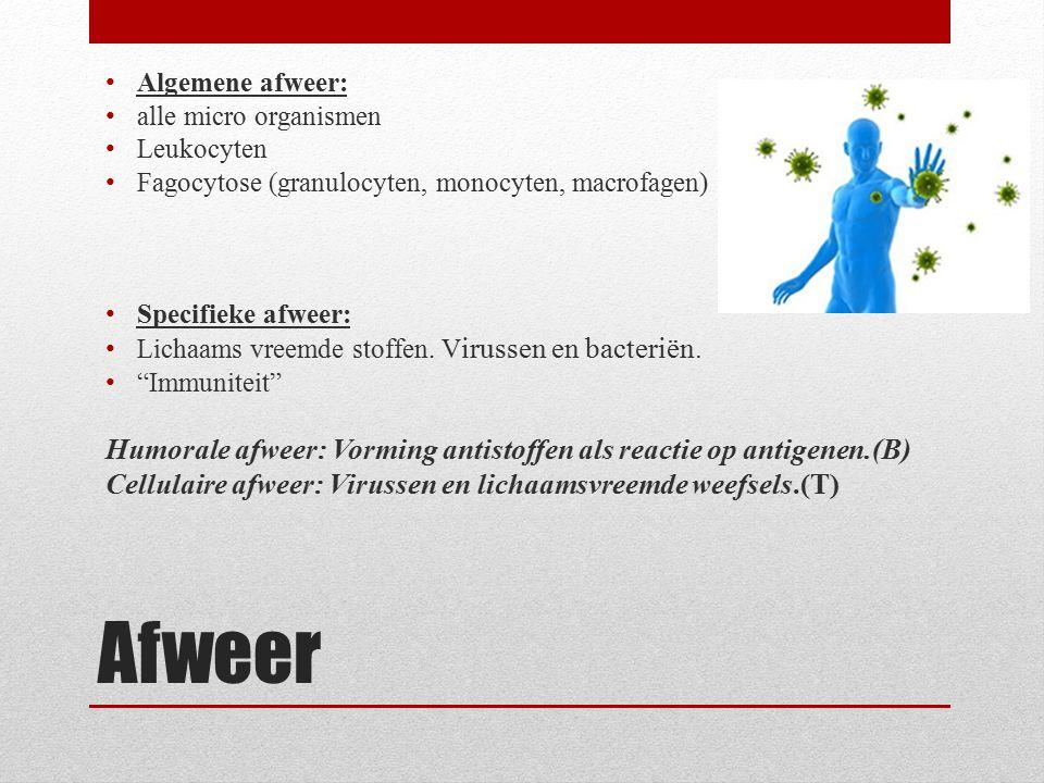 Algemene afweer: alle micro organismen. Leukocyten. Fagocytose (granulocyten, monocyten, macrofagen)