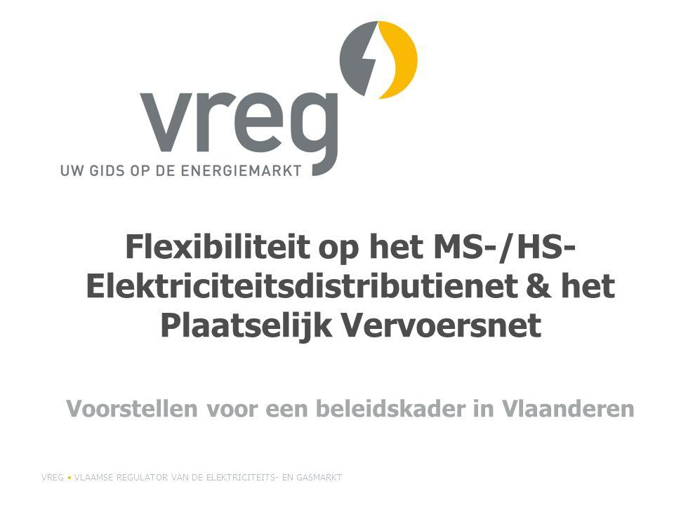 Flexibiliteit op het MS-/HS- Elektriciteitsdistributienet & het Plaatselijk Vervoersnet Voorstellen voor een beleidskader in Vlaanderen