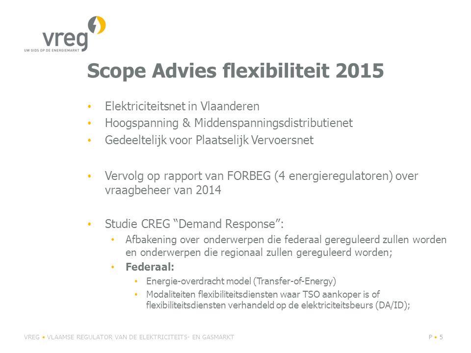 Scope Advies flexibiliteit 2015