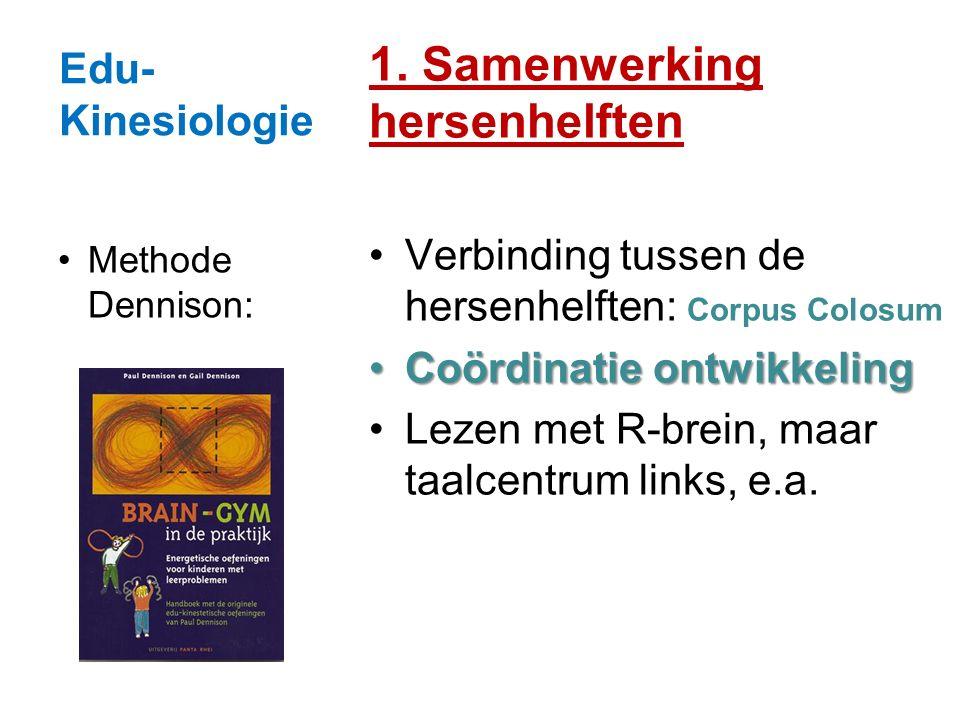 1. Samenwerking hersenhelften