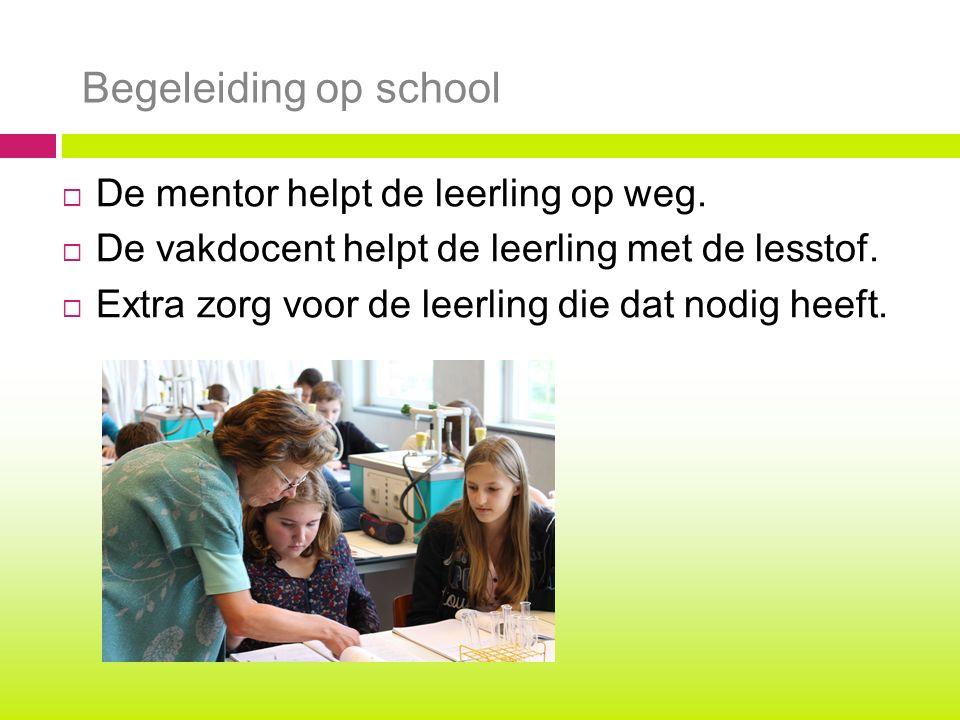 Begeleiding op school De mentor helpt de leerling op weg.