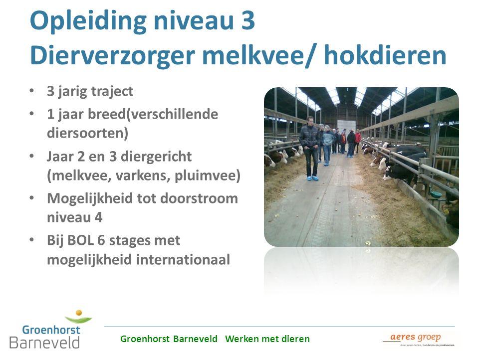 Opleiding niveau 3 Dierverzorger melkvee/ hokdieren