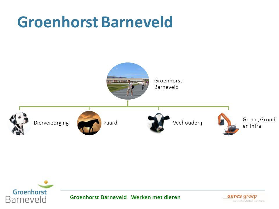 Groenhorst Barneveld Groenhorst Barneveld Werken met dieren