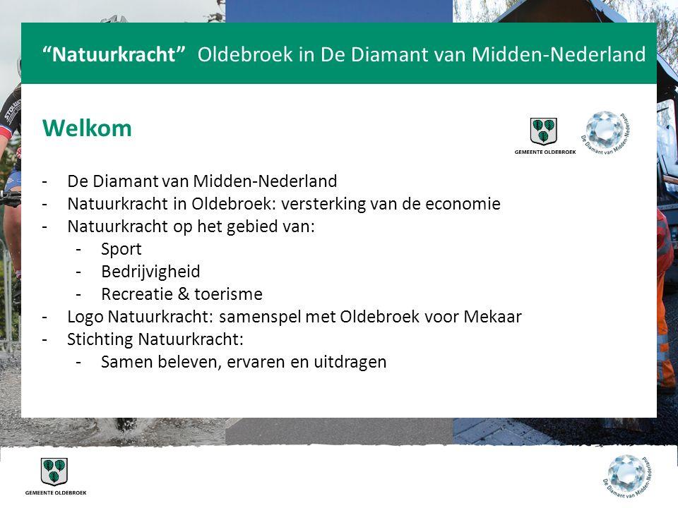 Welkom Natuurkracht Oldebroek in De Diamant van Midden-Nederland