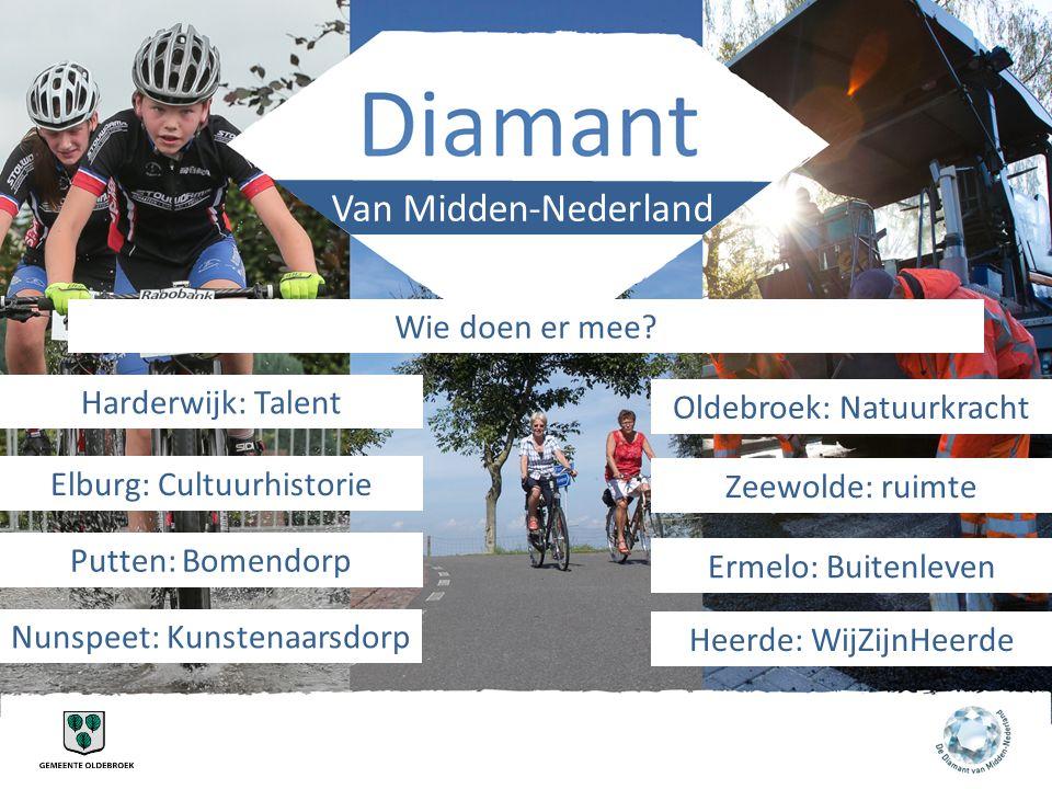 Van Midden-Nederland Wie doen er mee Harderwijk: Talent