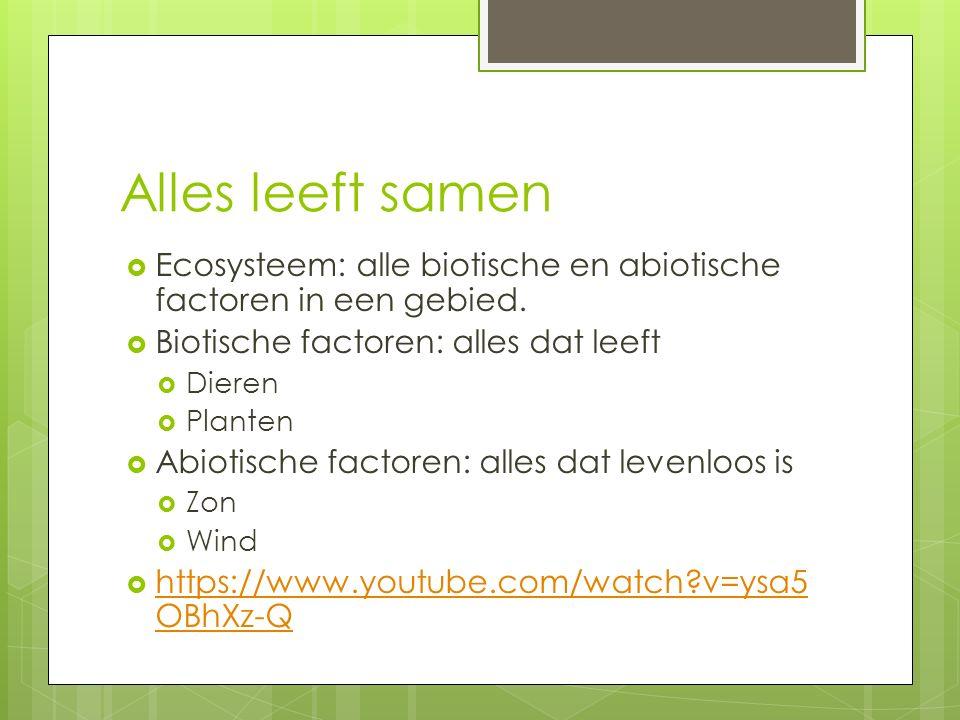 Alles leeft samen Ecosysteem: alle biotische en abiotische factoren in een gebied. Biotische factoren: alles dat leeft.