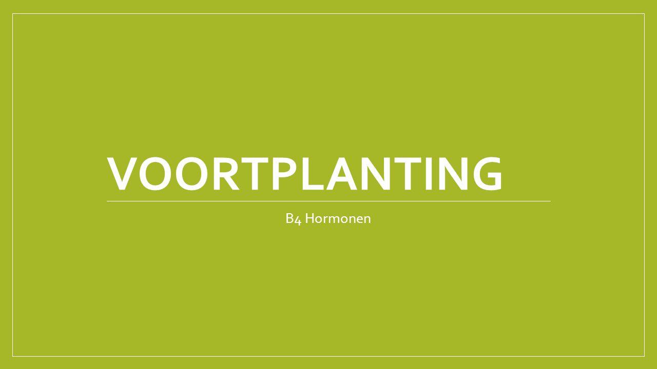 Voortplanting B4 Hormonen