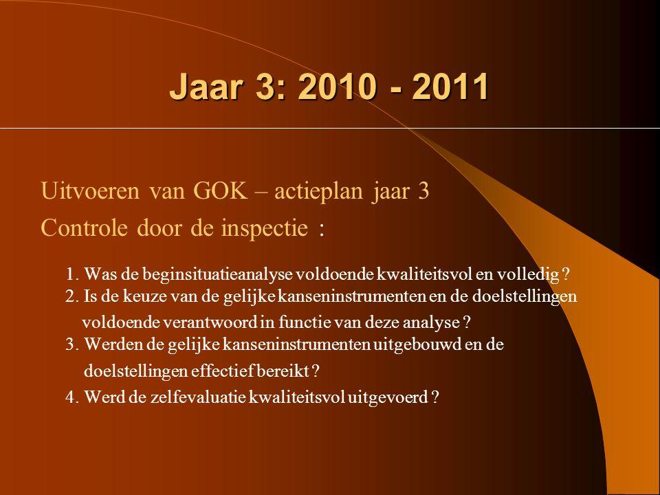 Jaar 3: 2010 - 2011 Uitvoeren van GOK – actieplan jaar 3