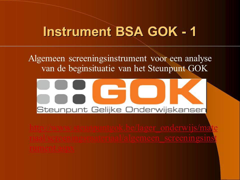 Instrument BSA GOK - 1 Algemeen screeningsinstrument voor een analyse van de beginsituatie van het Steunpunt GOK.